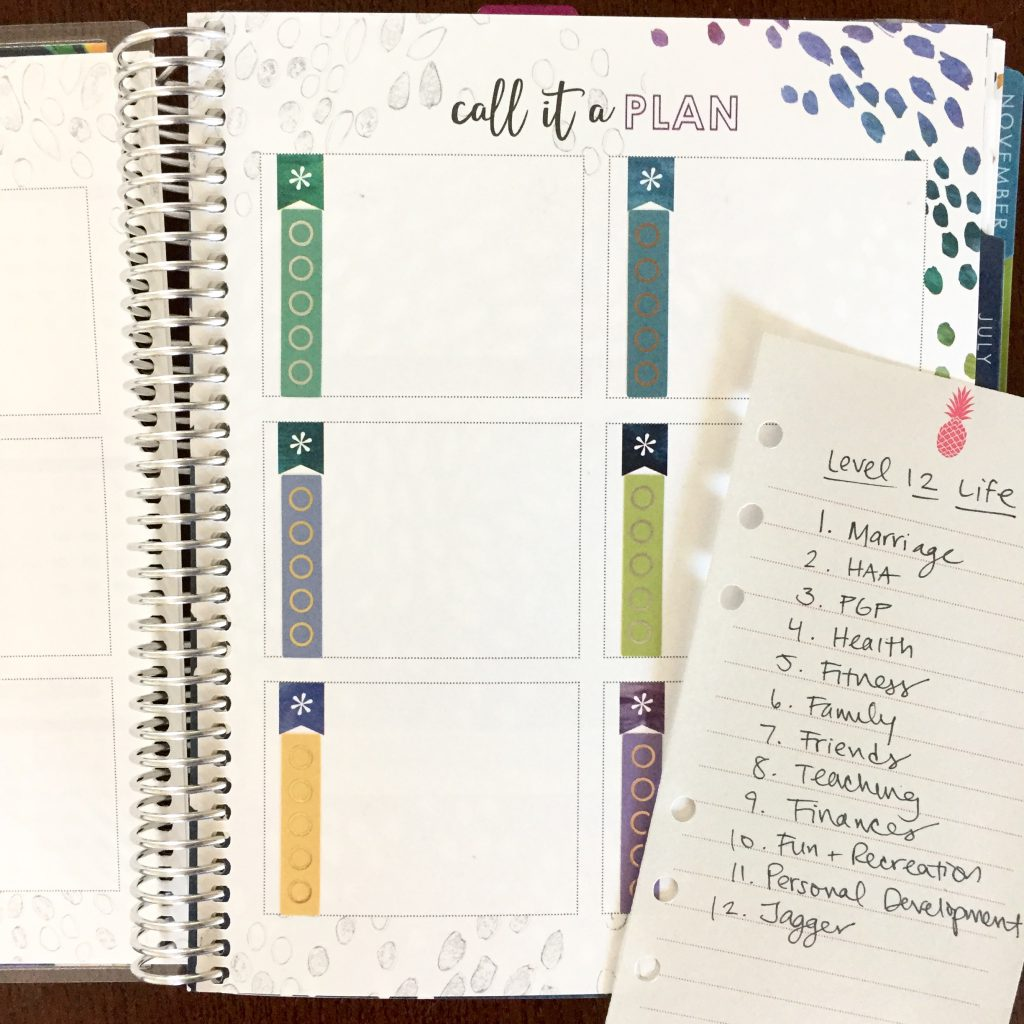 Planner Hack: Use the goals pages at the front of your Erin Condren Life Planner to list goals in 12 different areas of your life, including family, career, spirituality, and more.