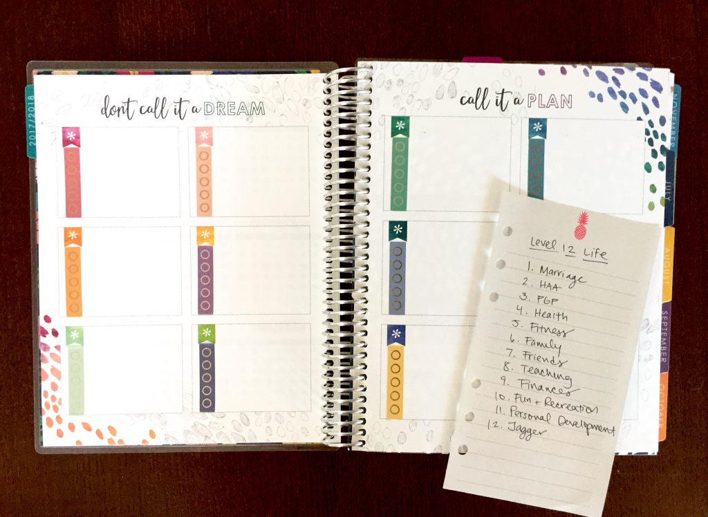 Using the goals pages at the front of the Erin Condren Life Planner to set and track goals in 12 areas of my life--1 area for each box.