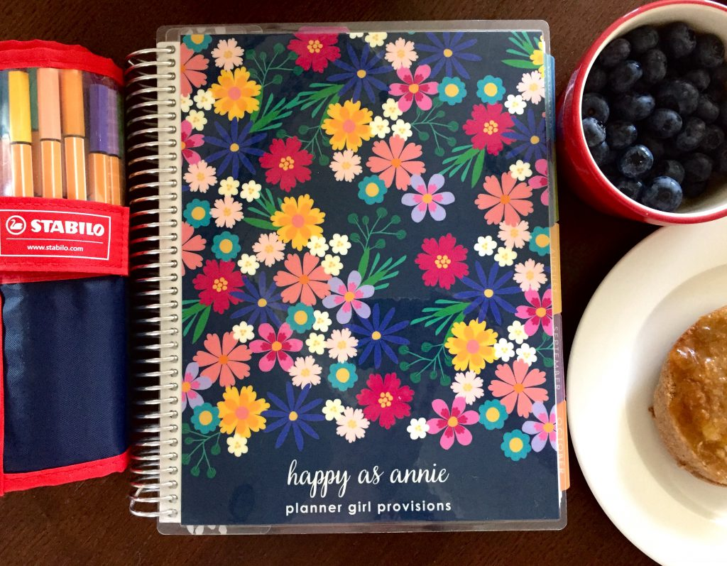 My Multi-Planner Planning System: Step 3 is to map out how I want to spend my time each day in my hourly Erin Condren planner.