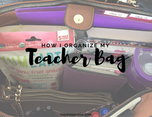 What's in My Teacher Bag? See how I organize all my professor stuff, planner stuff, and healthy stuff in my work bag.