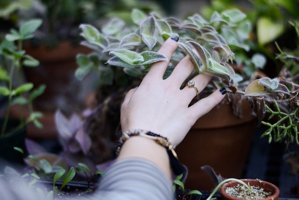 Bring the outside in. Happy As Annie   5 Easy Ways for City Dwellers to Spend More Time in Nature