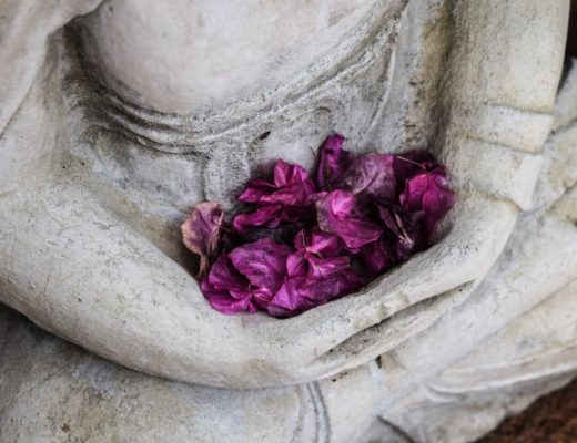 White buddha statue with purple flowers placed in its lap