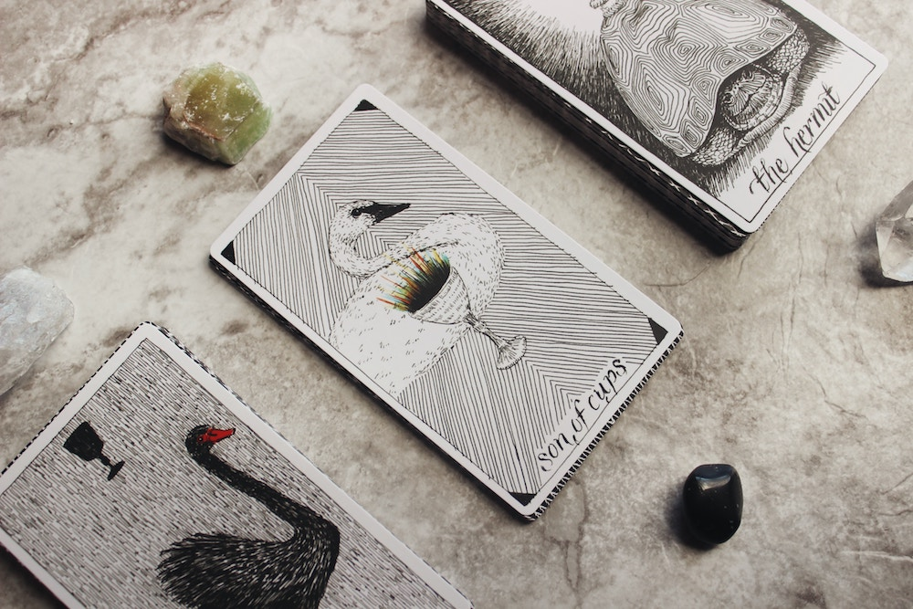 Wild Unknown Tarot Cards