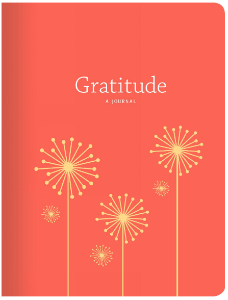 Gratitude Journal with Prompts | Gratitude: A Journal | Happy As Annie's 8 Best Gratitude Journals with Prompts