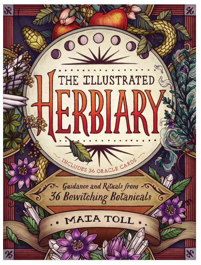 The Illustrated Herbiary by Maia Toll on The Ultimate Witchy Gift Guide by Happy As Annie